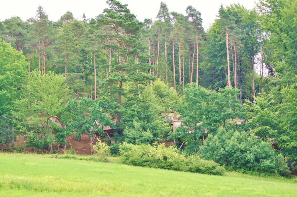 Baumhaushotel baden-württemberg