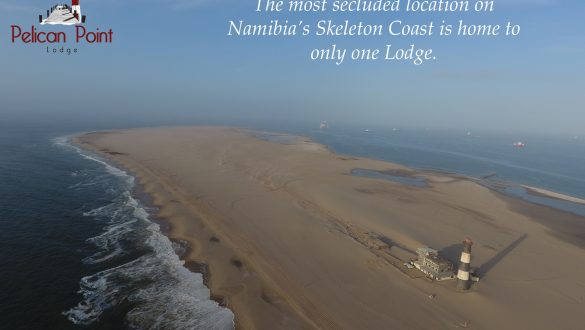 Pelican Point Lodge Namibia Hotel