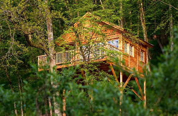 Das Baumhaushotel Seemühle