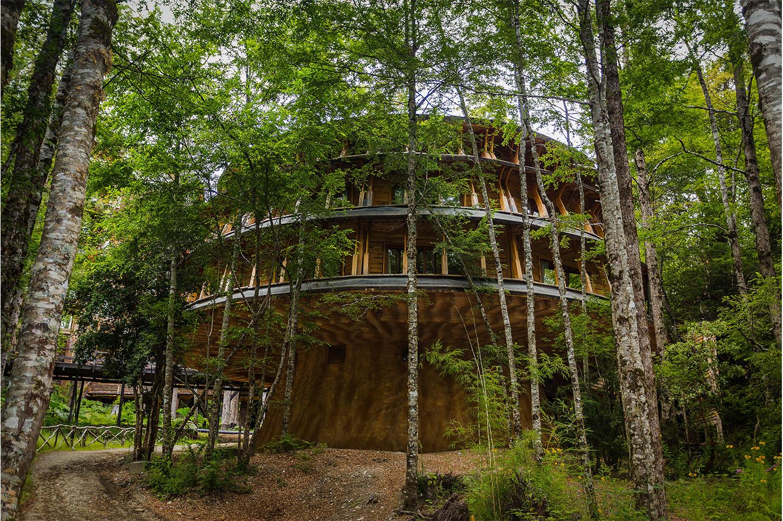Lodge Reino Fungi Hotel