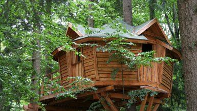 Baumhaushotel -Baum Übernachtungen